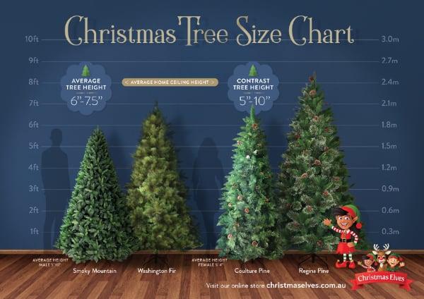 Christmas Tree Size Chart