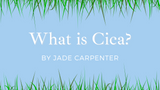 What is Cica?