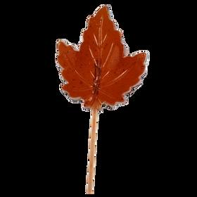 Maple leaf Lollipop