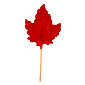 Maple Cherry Lollipop