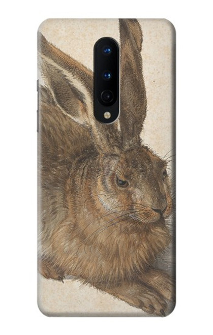 W3781 Albrecht Durer Young Hare Hülle Schutzhülle Taschen und Leder Flip für OnePlus 8