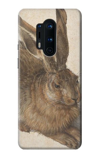 W3781 Albrecht Durer Young Hare Hülle Schutzhülle Taschen und Leder Flip für OnePlus 8 Pro