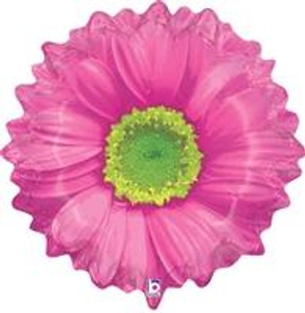 """24""""B Daisy, Pink (1 count)"""
