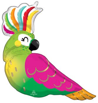 """31""""A Parrot Tropical Pkg (5 count)"""