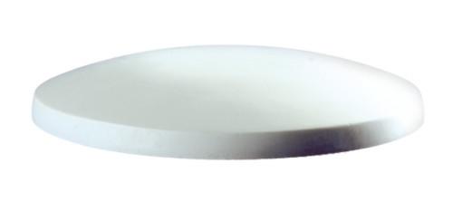 "DM-8 10"" Salad Plate Mold"
