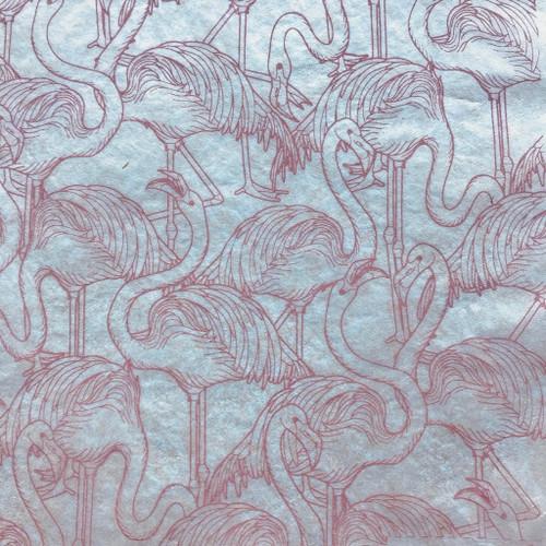 Flamingos - pink
