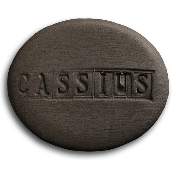 Aardvark Obsidian (formerly Cassius Basaltic) Cone 5