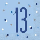 Blue 13th Birthday Decorations