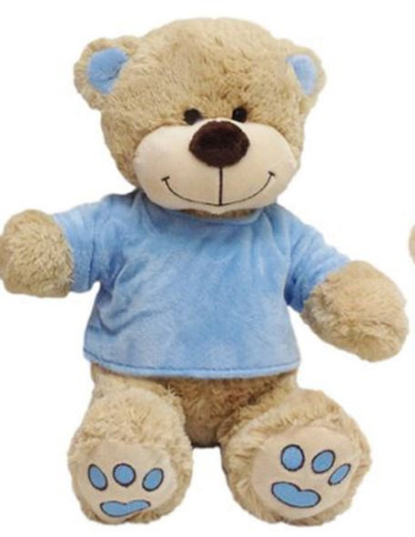 Personalised Teddy With Jumper