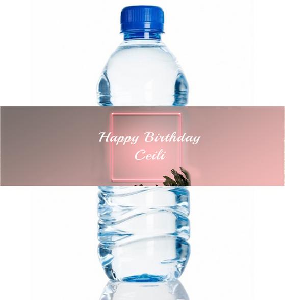4PK Pink Lights Water Bottle Labels