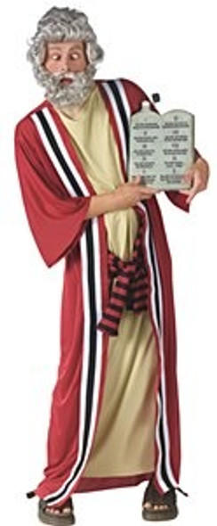 Party Commandments Costume