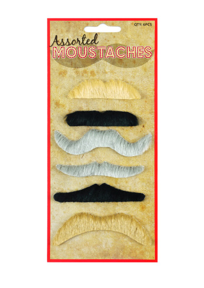 6 Assorted Mustaches