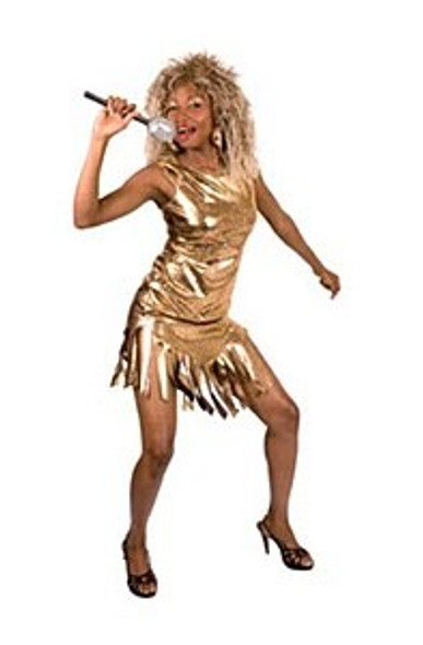 Tina Turner Costume