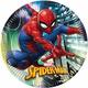 Spiderman Party Supplies