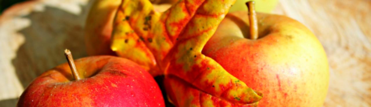Apple Chai Tightening Spray