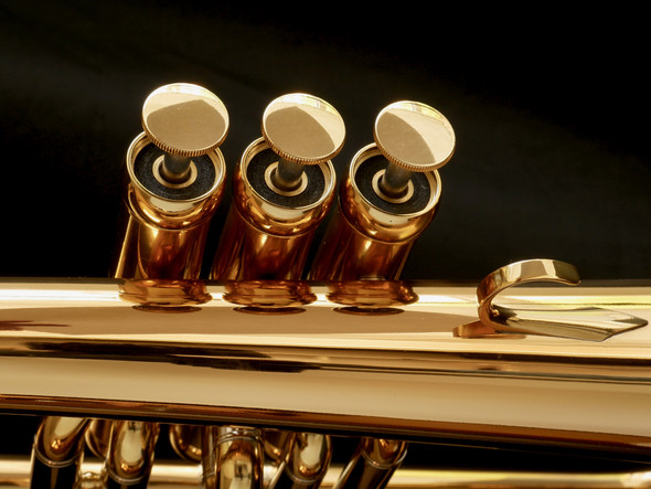 Brand New Adams Sonic Flugelhorn in Gold Lacquer!