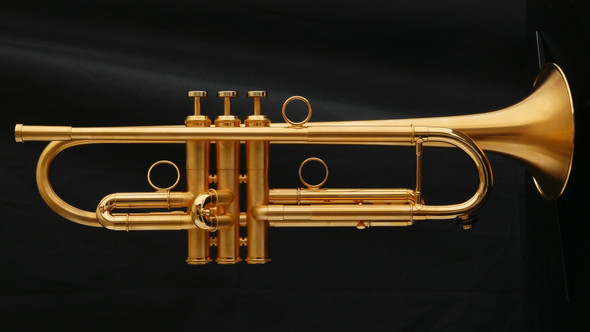 Custom Adams A1v2 Trumpet in Brushed Gold Plate with Polished Accents!