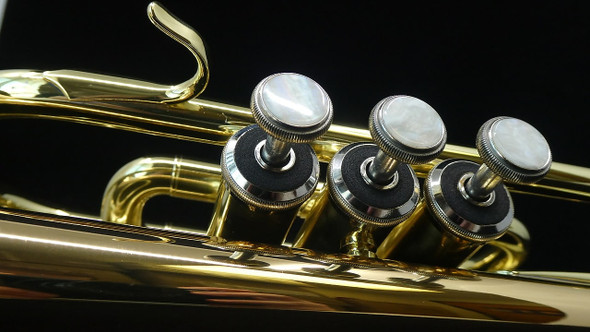 Manchester Professional Bb Cornet with Gold Brass Bell