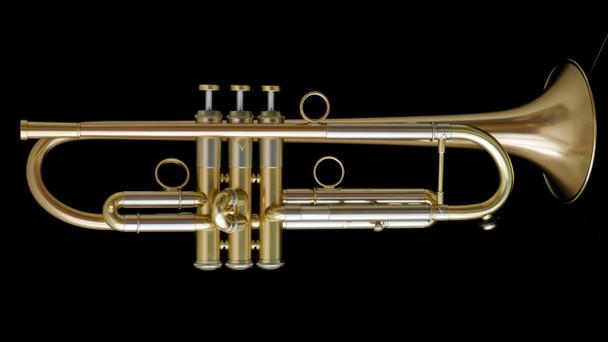 Custom Adams A1v2 with Gold Brass Bell! Wonderful Player!