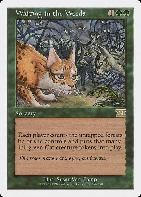 https://api.scryfall.com/cards/7e2d5a77-6ee8-463d-9e6a-fdb1cc6d70e6?format=image