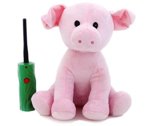Hide & Seek Pals Pig