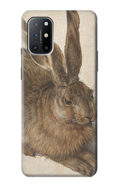 S3781 Albrecht Durer Young Hare Case For OnePlus 8T