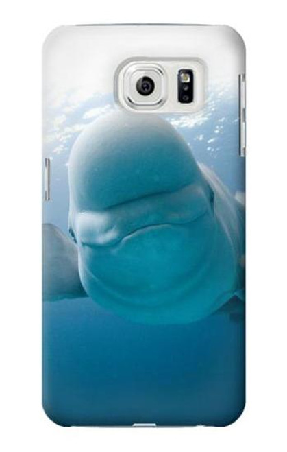 S1801 Beluga Whale Smile Whale Case For Samsung Galaxy S7 Edge
