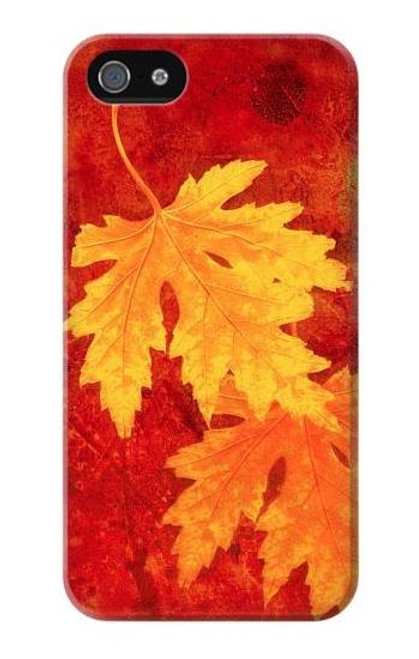 S0479 Maple Leaf Case Cover For IPHONE 4/4S