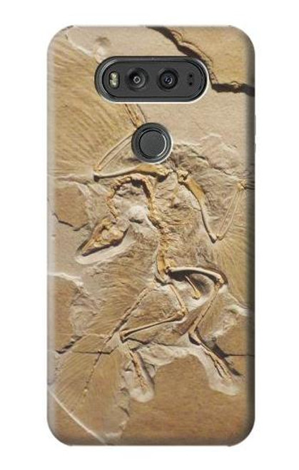 S0380 Dinosaur Fossil Case For LG V20