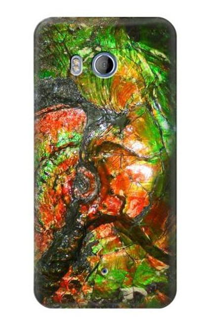S2694 Ammonite Fossil Case For HTC U11