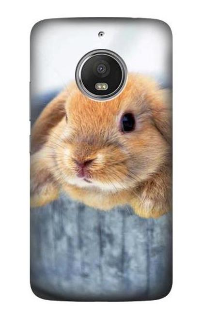 S0242 Cute Rabbit Case For Motorola Moto G5S