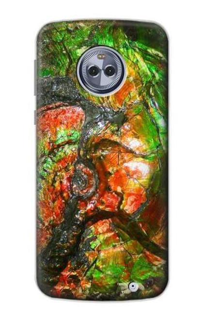S2694 Ammonite Fossil Case For Motorola Moto G6 Plus