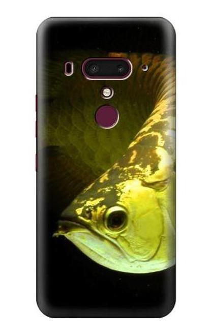 S1021 Gold Arowana Fish Case For HTC U12+, HTC U12 Plus