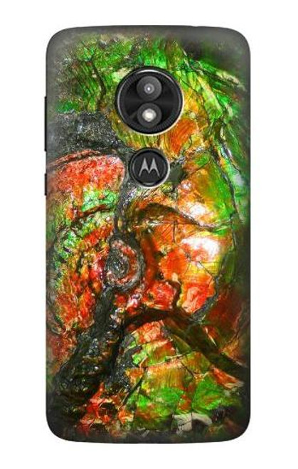 S2694 Ammonite Fossil Case For Motorola Moto E Play (5th Gen.), Moto E5 Play, Moto E5 Cruise (E5 Play US Version)