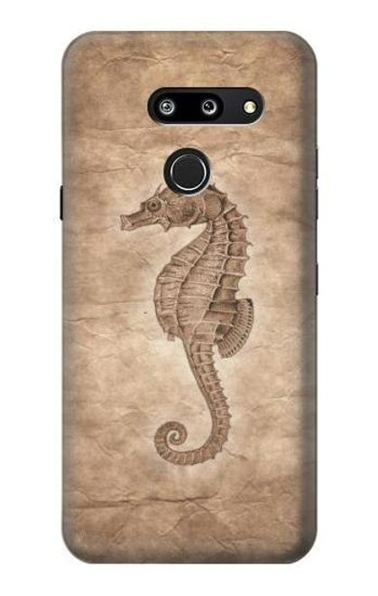 S3214 Seahorse Skeleton Fossil Case For LG G8 ThinQ