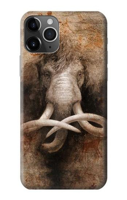 S3427 Mammoth Ancient Cave Art Case For iPhone 11 Pro