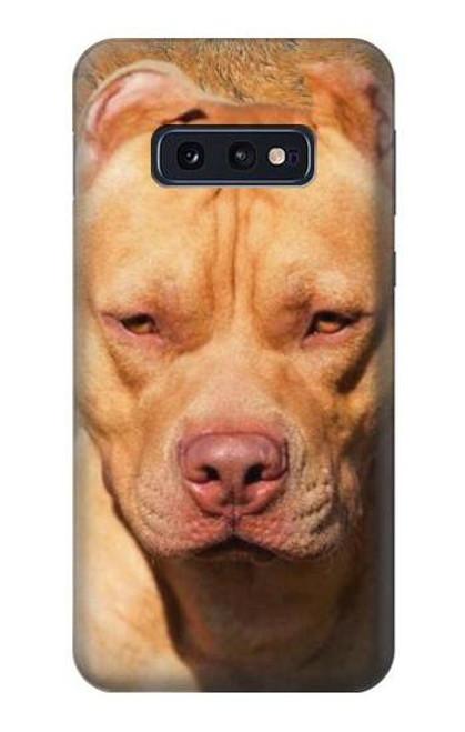 S2903 American Pitbull Dog Case For Samsung Galaxy S10e