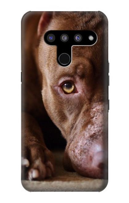 S0519 PitBull Face Case For LG V50, LG V50 ThinQ 5G
