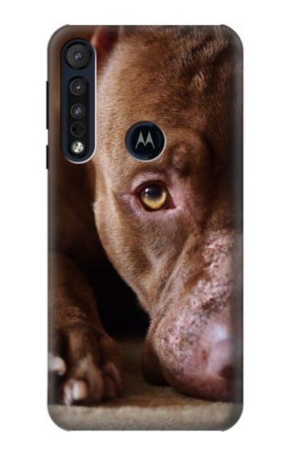 S0519 PitBull Face Case For Motorola One Macro, Moto G8 Play