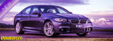 BMW / ROLLS ROYCE Front Upper Wishbone Bushes