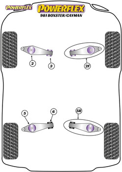 Powerflex Track Control Arm & Bush Kit (Adjustable) - Boxster 981 - PF57K-1002G