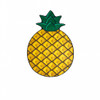 giant-gigantic-pineapple-beach-blanket-pool-party-supplies-nightclub-shop-outdoors-2