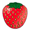 giant-gigantic-strawberry-beach-blanket-pool-party-supplies-nightclub-shop-outdoors-2