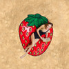 giant-gigantic-strawberry-beach-blanket-pool-party-supplies-nightclub-shop-outdoors
