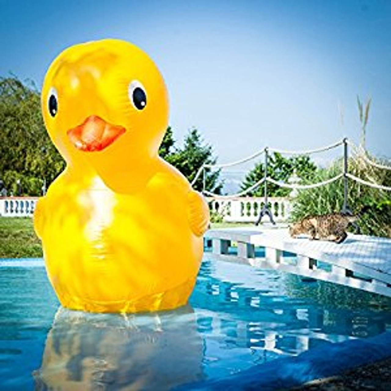 giant-gigantic-7-foot-rubber-duckie-nightclub-shop-pool-party-supplies-inflatable-float-xxl-4