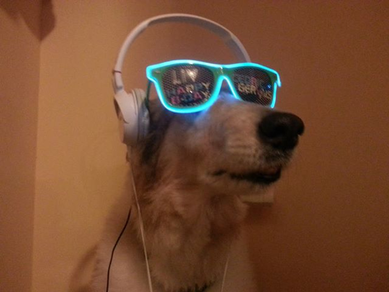 LED, Lightup, promo, glasses, Glow-Glasses, Glow, LED,