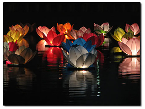 LOTUS FLOWER LANTERN, SKY LANTERN, CHINESE LANTERN, WEDDING FAVOR, WEDDING WISHES