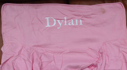 Premonogrammed Regular Size Ugly-Where Chair - Dylan -  LM319 - Pink