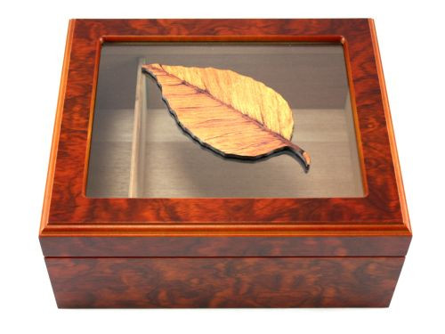 Alberto Cigar Humidor