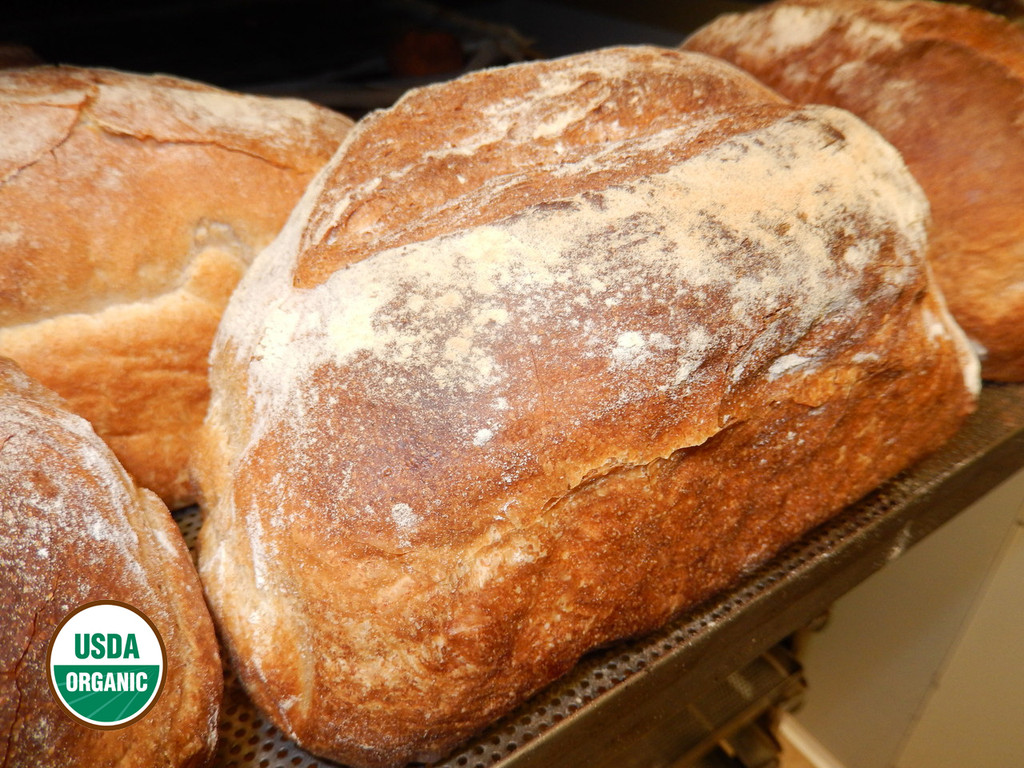 ORGANIC WHOLE WHEAT BREAD